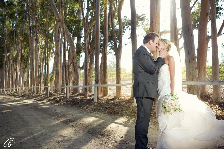 Tulbagh Wedding Bravenboer  10